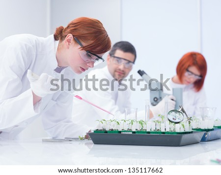 close-up of a student in a chemistry lab  doing experiments on plants under a teacher supervising and another student on the background analyzing - stock photo