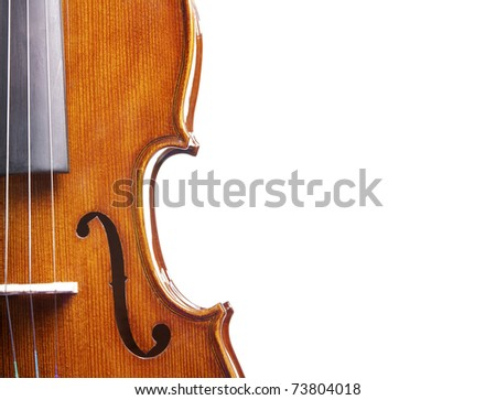 Close up of a violin isolated on a white background - stock photo