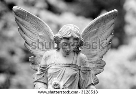 Close-up of a winged angel with solemn look - stock photo