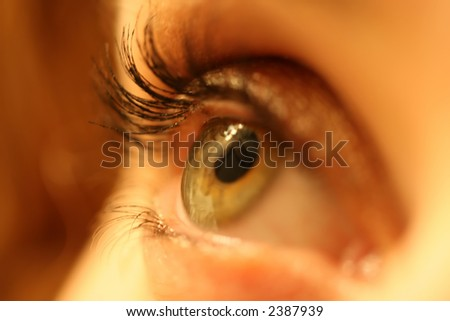 Close up of a woman's eye with make-up