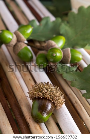 Close-up of acorn sprigs of wood with scented candle  - stock photo