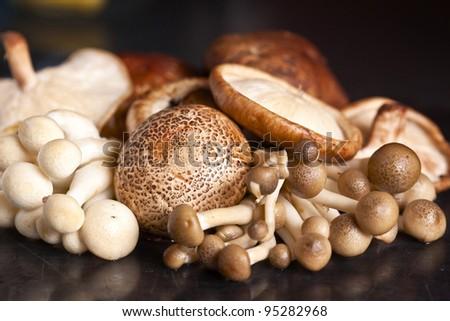 Close up of an assortment of mushrooms - stock photo