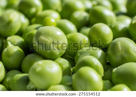 close up of an handful of fresh green peas - stock photo