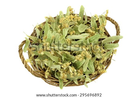 Close-up Of Basket With  Eastern Europe Linden Tree Leafs, Blossom And Fruits Isolated On White Background. Ingredient For Traditional Caffeine-free Green Tee Named As Tilleul