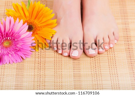 Close-up of beautiful manicured feet with pedicure and flowers - stock photo