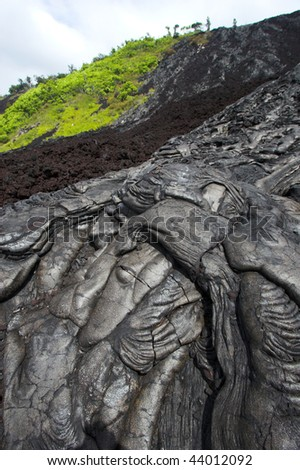 Close up of black lava and green fern in Hawaii Volcanoes National Park - stock photo