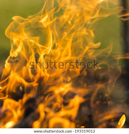 Close up of blazing fire. Whole background. - stock photo