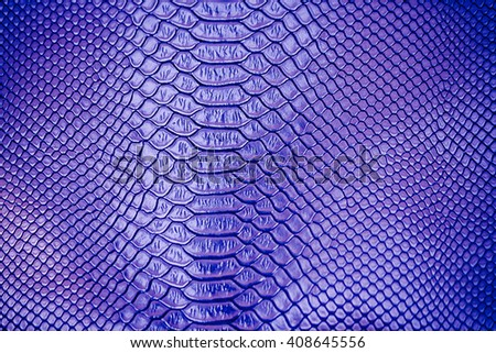 Close up of blue Luxury snake skin texture use for background - stock photo