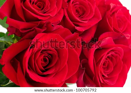 Close up of bright red rose bouquet - stock photo