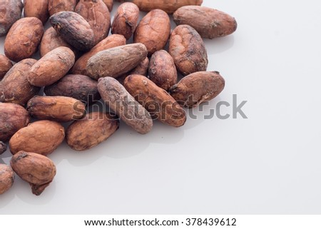 Close Up of Cacao Beans