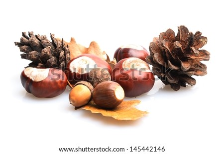 Close-up of chestnuts and acorns on white background.