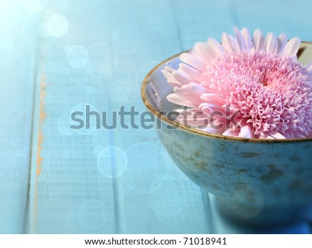Close up of chrysanthemum flower floating in bowl of water - stock photo