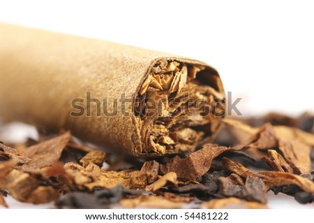 Close-up of cigar and pile of tobacco on white background.