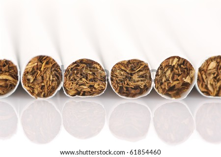 Close-up of cigarettes in row on white background. - stock photo