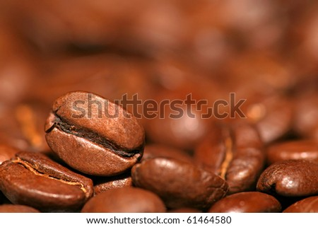 Close up of coffee bean on coffee's background - stock photo