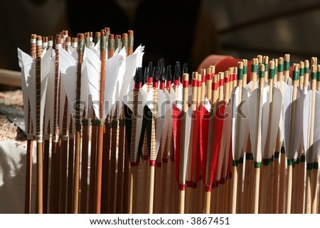 Close up of collection of archery arrows / feathers and shafts - stock photo