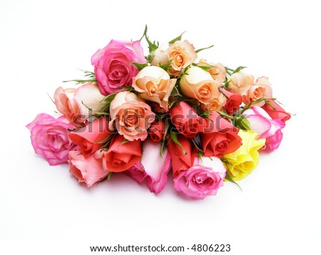 Close-up of colorful bunch of roses on white background - stock photo