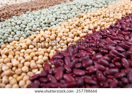 close up of colorful raw legumes, with red kidney beans, chick peas, green peas, lentils, white beans,  - stock photo