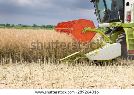 Close up of combine harvester cutting rapeseed plants in the field - stock photo