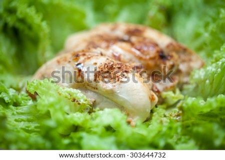 Close up of cooked chicken fillet with green lettuce surrouding. - stock photo