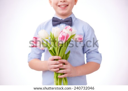 Close-up of cut tulips in hands of a child - stock photo