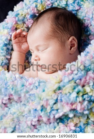 close up of 14 day old newborn sleeping - stock photo