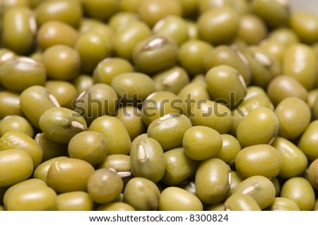 close up of dried green mungo beans