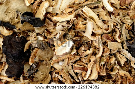 close-up of dried mushrooms
