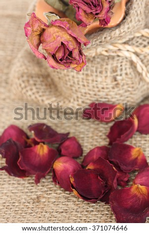 Close up of dried withered roses bouquet and petals on sackcloth background. - stock photo