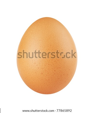 close up of egg isolated on white background - stock photo