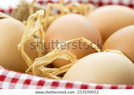 Close up of Eggs in Basket  - stock photo