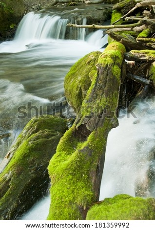 Close up of fallen log and blurred motion waterfall. - stock photo