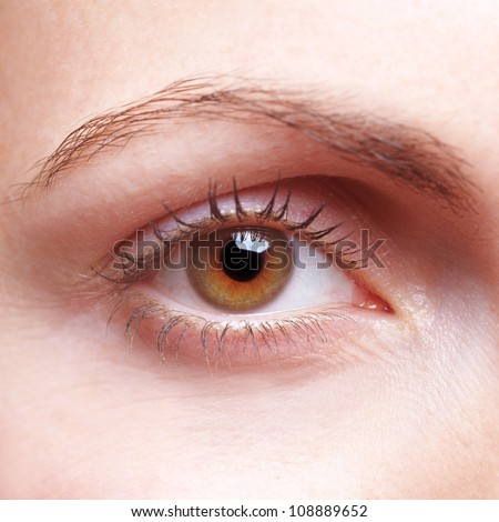 Close-up of female human eye with eyebrow - stock photo