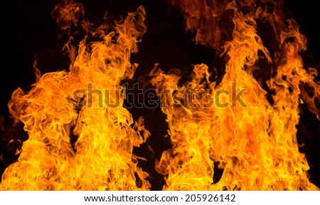 Close-up of fire and flames
