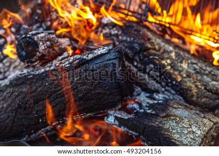 Close up of Fire woods and hot coal in a grill