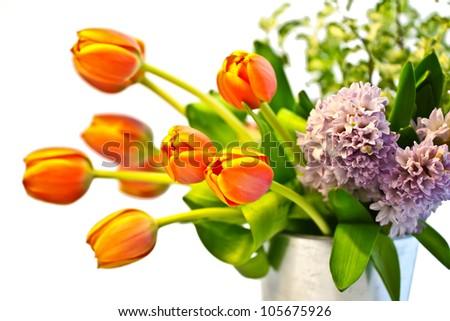 Close up of Flower Arrangement - stock photo