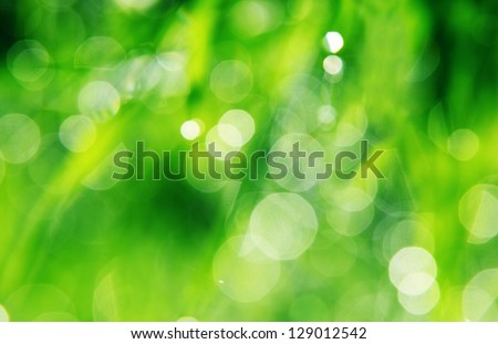 Close up of fresh morning dew on spring grass - stock photo