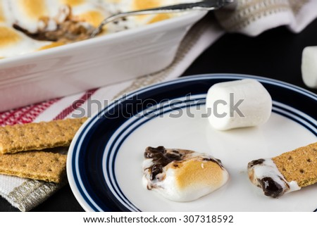 Close up of fresh s'mores dip and crackers on a plate.