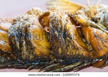 Close up of fried Barramundi or Asian seabass (Lates calcarifer) fish - stock photo