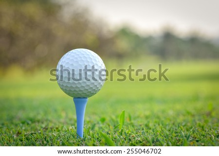 Close up of golf ball on tee in golf course - stock photo
