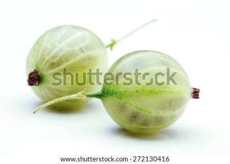 Close up of gooseberry on white bacground