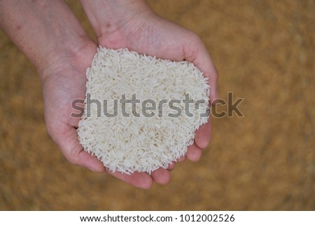 Close-up of grains of uncooked white  jasmine rice in lady hands.