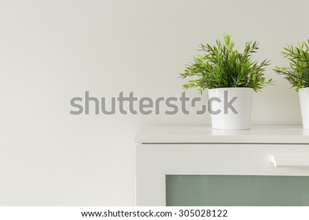 Close up of green plants in white pots on cabinet