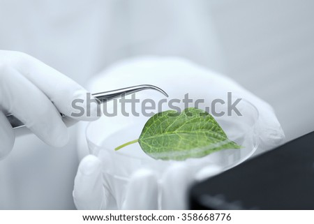 close up of hand with microscope and green leaf - stock photo