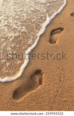 close-up of human footprints in the wet sand at the seaside