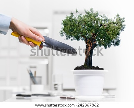 Close up of human hand and plant in pot