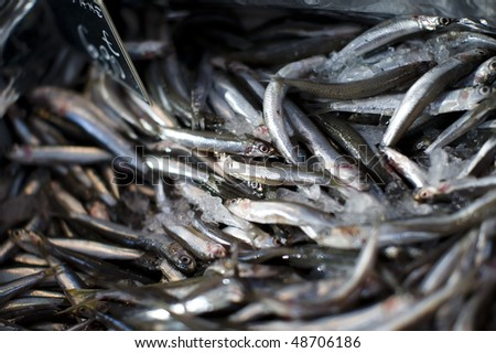 Close up of large number of small fish on ice for sale at an out door market.