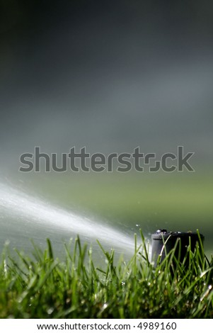 Close up of lawn sprinkler with copy space - stock photo