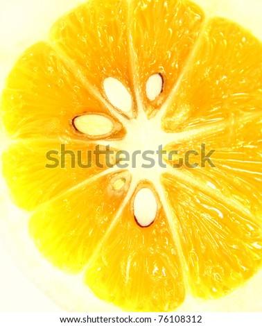 Close-up of lemon slice - stock photo