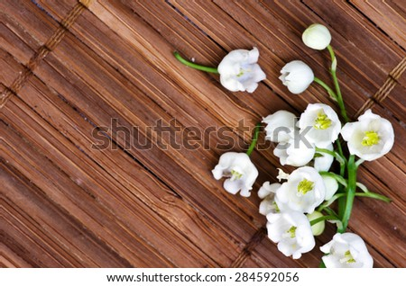 Close up of Lily of the valley - stock photo